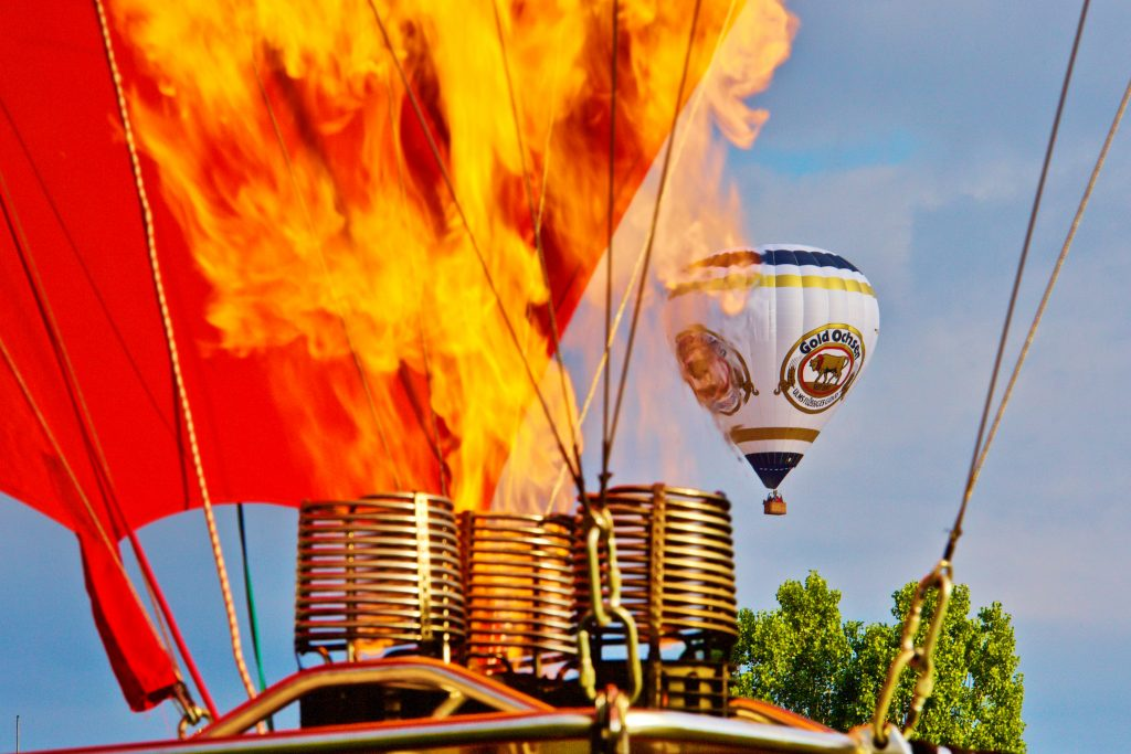 Gold Ochsen Ballon